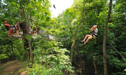 Zipline Tour and T-Shirt for One, Two, or Four at Long Point Eco-Adventures (Up to 38% Off)