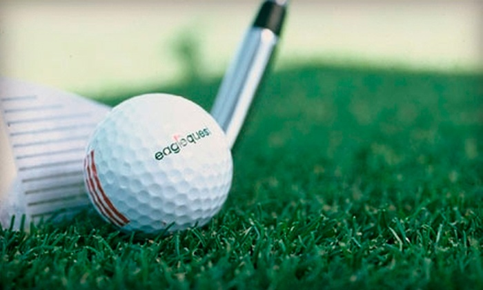 Eaglequest Coquitlam - Coquitlam: 18-Hole Round of Mini Golf or 9-Hole Round of Par 27 Golf for Two or Four at Eaglequest Coquitlam (Up to 56% Off)