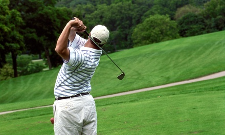 30- or 60-Minute Private Golf Lesson with Golf Pro Brad Smith at The Sedgewood Club (Up to 53% Off)
