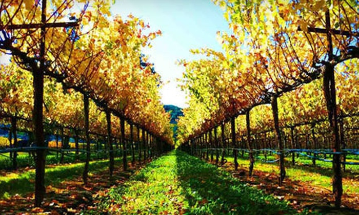 Jewels Wine Drivers - Napa: $189 for a Guided Six-Hour Wine Tour of Napa Valley in Your Own Car from Jewels Wine Tours ($390 Value)