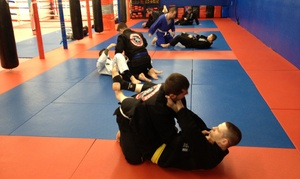 Roshankish Krav Maga: Five Brazilian Jiu-Jitsu Classes at Roshankish Martial Arts (55% Off)