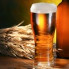 Up to 72% Off a Microbrewery and Winery Tour