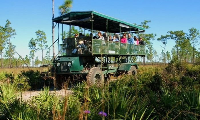 Florida EcoSafaris - St. Cloud: Coach Safari for One, Two, or Four from Florida EcoSafaris (Up to 46% Off)
