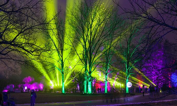 The Morton Arboretum - The Morton Arboretum: Illumination: Tree Lights at The Morton Arboretum on November 20–December 17 (Up to 36% Off)