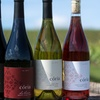 Up to 50% Off Flight,Wine,Cheese Plate at Coria Estates