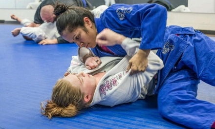 $99 for $330 Worth of Martial-Arts Lessons — Brazilian Jiu Jitsu Goshen