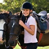 Up to 61% Off Horse Riding Lessons and Boarding