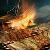 Up to 40% Off at Honey Pig Gooldaegee Korean Grill