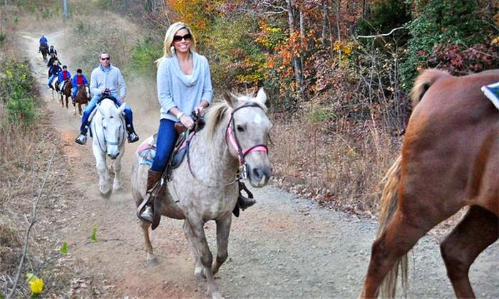 Latta Equestrian Center - Huntersville: Horseback Trail Ride for One or Two at Latta Equestrian Center (40% Off)
