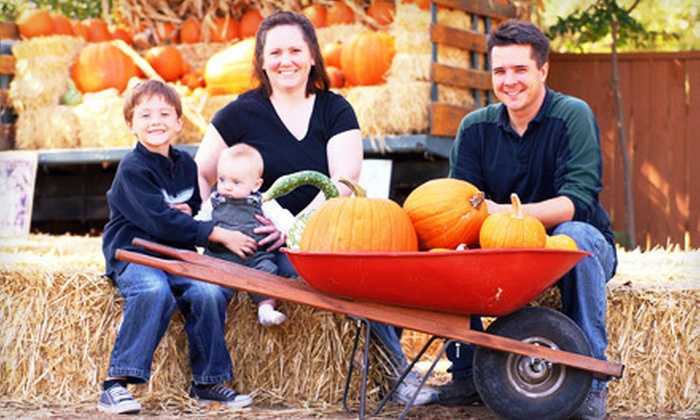 Lazy T Ranch Adventures - Manhattan: Fall-Festival Outing for Two, Four, or Six with Food at Lazy T Ranch Adventures (Up to 56% Off)