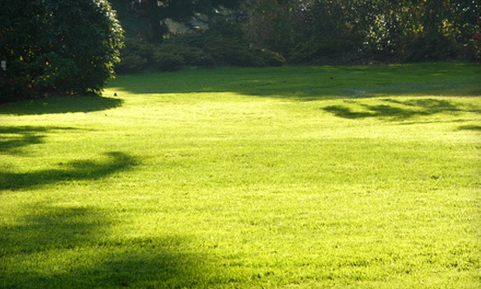 Earthworks & Co. - Springfield: $275 for a Complete Lawn Renovation from Earthworks & Co. ($550 Value)