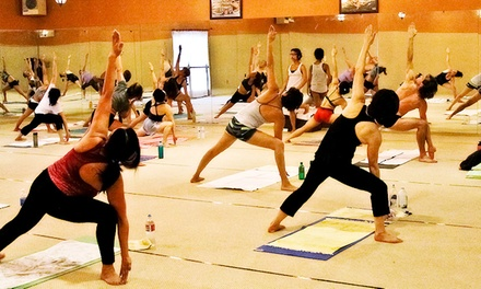 20 or 35 Yoga Classes at Bikram Yoga Seacliff (89% Off)