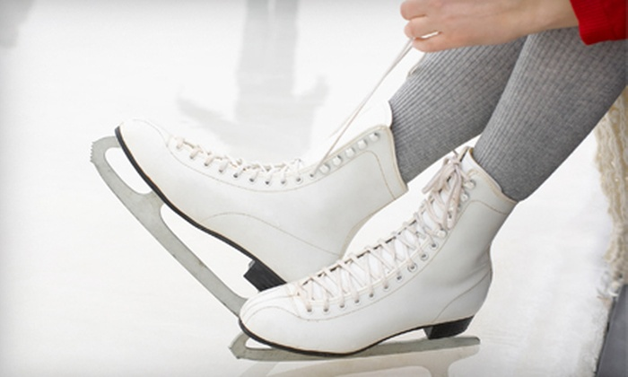 Midwest Training and Ice Center - Midwest Training and Ice Center: Open Skate with Skate Rental for Two or Four or Ice-Skating Lessons at Midwest Training and Ice Center (Half Off)