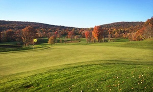 Laurel View Country Club: 18-Hole Round of Golf for 2 or 4 with Cart Rental and Range Balls at Laurel View Country Club (Up to 41% Off)