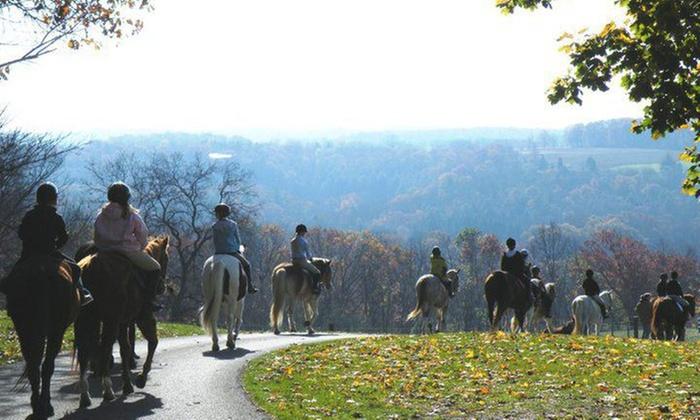Horseng Farm - Allentown / Reading: Two Horseback-Riding Lessons at Horseng Farm (64% Off)