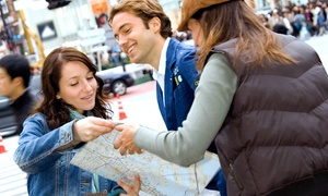 """Travel Masters Academy: """"How to Fly For Free"""" Courses from Travel Masters Academy (Up to 72% Off). Three Options Available."""