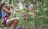 Up to 26% Off Aerial Adventure at The Adventure Park at Storrs