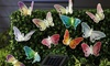 Think Global General Trading: Butterfly Solar Garden Lights from AED 59