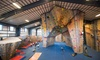 Central Rock Gym - Hadley: $39 for a One-Month Rock-Climbing Membership at Central Rock Gym ($79 Value)