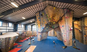 Central Rock Gym: $39 for a One-Month Rock-Climbing Membership at Central Rock Gym ($79 Value)