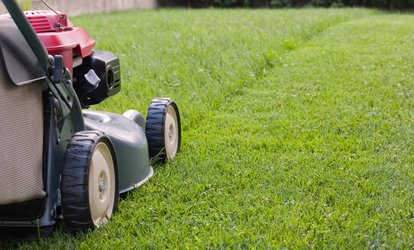 image for $28 Off $50 Worth of Lawn Mowing Service