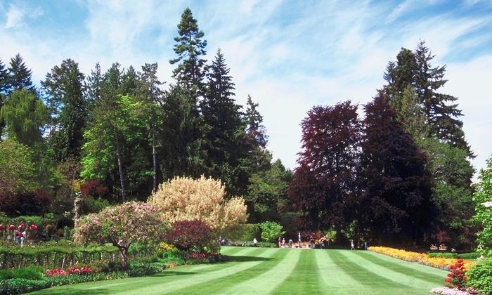 Cheapside Property Enhancement - Washington DC: $275 for $500 Worth of Landscaping — Cheapside Property Enhancement