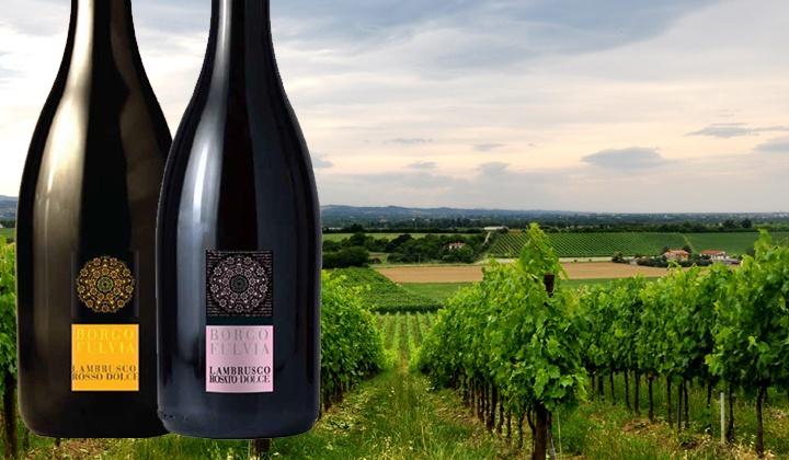 Wijnmarkt - Kontich: 4 paquets différents de 6 bouteilles de Spumante ou Lambrusco chez De Wijnmarkt