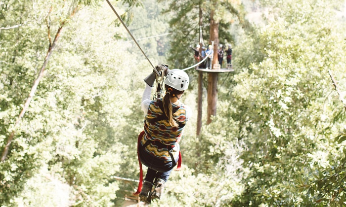 Sonoma Canopy Tours Forest Flight or Tree Tops Zipline Experience at Sonoma Canopy Tours ... & Zipline Experience - Sonoma Canopy Tours | Groupon