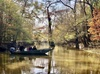 Up to 21% Off 2-Hour Eco-Swamp Tours