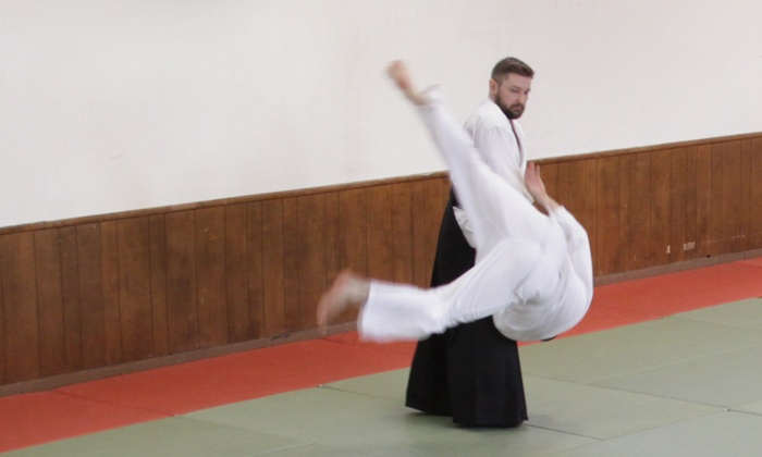 Aikido Academy Los Angeles - Los Angeles: $45 for $150 Worth of Aikido Classes — Aikido Academy Los Angeles