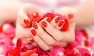 Profiles Plus Hair Salon: Full-Service Manicure, Pedicure, or Mani-Pedi at Profiles Plus Hair Salon (Up to 50% Off)