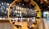 Up to $18 Cash Back at Snakes and Lattes