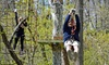 Up to 72% Off Attractions at Treetop Adventures