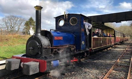 Steam Railway Return Tickets for Two Adults, or Two Adults and Two Children at Bala Lake Railway