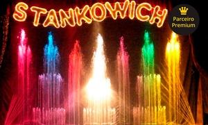 Circo Stankowich - Unidade Pink/Vermelha: 1 ou 2 ingressos para cadeira central adulto no Circo Stankowich – Av. Alcantara Machado, 4600