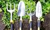 Garden Tool Set with Comfort Grip Handles (4-Piece)