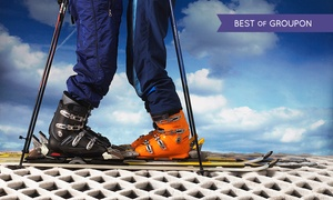 Brentwood Park Ski and Snowboard Centre: Two-Hour Ski or Snowboard Session from £12 at Brentwood Park Ski and Snowboard Centre (Up to 62% Off)