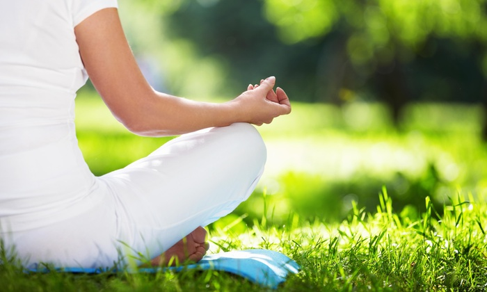 Pfityoga - River Forest: Two Outdoor Yoga Classes at PFit Yoga- Pilsen, Chicago (70% Off)