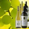 79% Off 15 Bottles of Chardonnay from Splash Wines