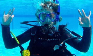 Eco Dive Center: $49 for a Discover Scuba Diving Class at Eco Dive Center ($99 Value)