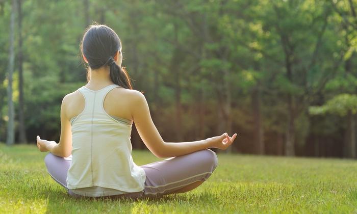 Platinum Health, Fitness & Yoga - National Gardens: $32 for 10 Barre or Yoga Classes at Platinum Health, Fitness & Yoga ($100 Value)