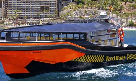 Tour en barco y avistamiento de cetáceos con refresco o con comida y bebida para 2 o 4 desde 24,95 € en Taxiboat