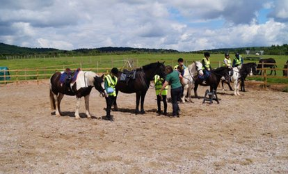 image for One-Hour Pony Trekking for One or Two at SevernwyeEquestrian (20% Off)