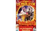Une place en gradins de face pour adulte ou enfant pour le Cirque La Piste dOr près de chez soi à 10 €