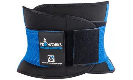 ProWorks Back Support Belt with Elastic Strap