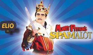 TORINO SPETTACOLI: Elio in Spamalot dal 16 al 18 gennaio al Teatro Alfieri di Torino (sconto 48%)