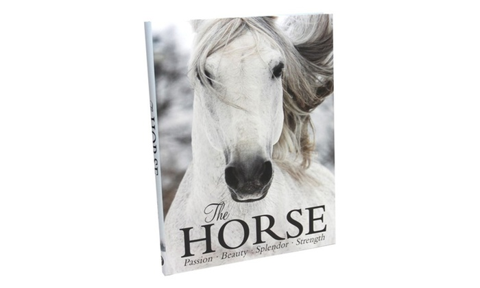 The Horse Coffee Table Book Groupon Goods