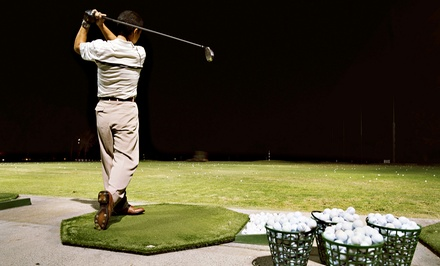 Golf Lessons and Practice at Markham Golf Dome (Up to 52% Off). Three Options Available.