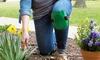 Pure Garden Kneepads (1-Pair): Pure Garden Kneepads (1-Pair)