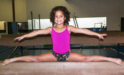 image for Four Open-Gym Sessions for Ages 2–5 or 6–18 at Southwest <strong>Gymnastics</strong> Training Center (Up to 62% Off)